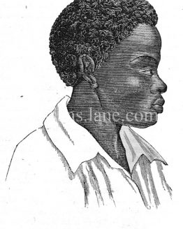 Negro Man Antique illustration 1860 wood engraving.