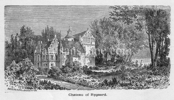 Rygaard Chateau in Denmark Antique print 1878 engraving