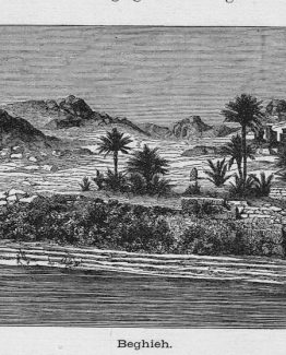 Beghieh antique engraved woodprint 1887 illustration